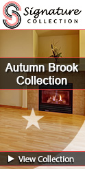RA Siegel Autumn Brook