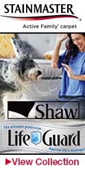 shaw lifeguard Waterproof