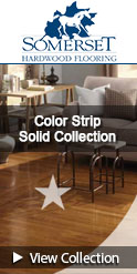 somerset color strip solid