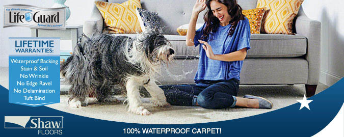 lifeguard 100% waterproof stain resistant carpet shaw stainmaster