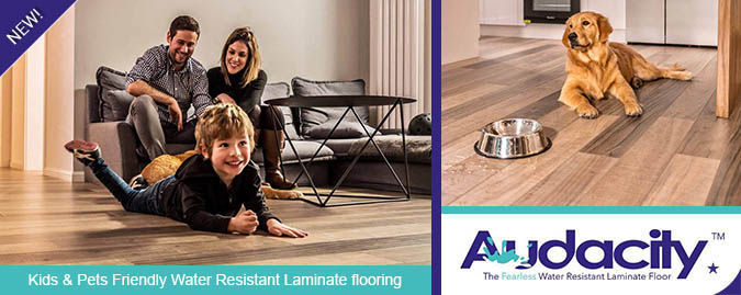 Armstrong Audacity Pet Friendly Laminate Flooring Collection