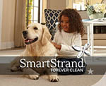 Mohawk smartstrand stain resistant carpeting American Carpet wholesale