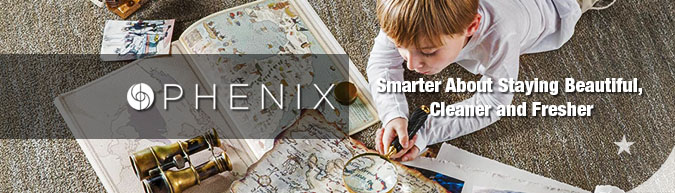Phenix pattern carpet collection save 30-60% on sale