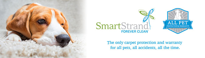 Featuring Smartstrand Forever Clean The Most Durable Easiest To Carpet On Planet