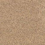 mohawk carpet smartstrand healing touch 508 NUTRIA