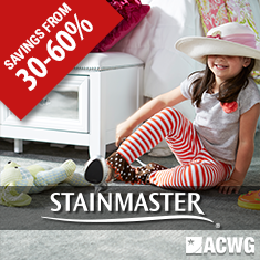 Stainmaster Carpet on Sale