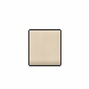 Accessories Bone (Grout) 1 Gallon