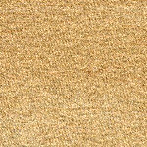 Northern Maple 3 Inch Natural 3