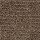Aladdin Carpet: Defined Design Havana Tan