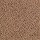 Horizon Carpet: Sevilla Island Sweet Chestnut