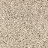 Aladdin Carpet