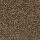 Aladdin Carpet: Unity Tender Brown
