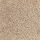 Aladdin Carpet: Avenger Safari Tan