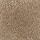 Aladdin Carpet: Classical Design I 12' Desert Mud