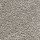 Aladdin Carpet: Classical Design I 12' Foil