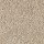 Aladdin Carpet: Classical Design I 15' Light Antique