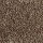 Aladdin Carpet: Classical Design III 12' Rustic Beam