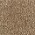 Aladdin Carpet: Classical Design III 15' Desert Mud