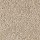 Aladdin Carpet: Classical Design III 15' Light Antique