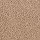 Aladdin Carpet: Coastal Content Maple Tint