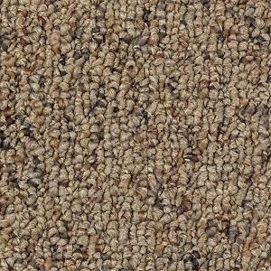 Creative Nature Aladdin Carpet Mohawk Carpet Rich