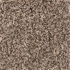 Enchanting Design Aladdin Carpet Mohawk Carpet