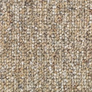 Endless Naturals 15 Aladdin Carpet Mohawk Carpet