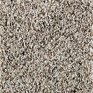 Softly Elegant Ii Aladdin Carpet Mohawk Carpet