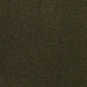 Classic Vision Aladdin Commercial Mohawk Carpet