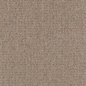 Tuition Prisms 28 Aladdin Commercial Mohawk Carpet