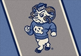 N Carolina Tarheels Team Spirit Rug