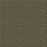 Beaulieu Indoor Outdoor Carpet