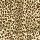 Couristan Carpets: Cape Town Collection Cheetah