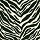 Couristan Carpets: Cape Town Collection Zebra