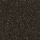 Couristan Carpets: Tibet Black