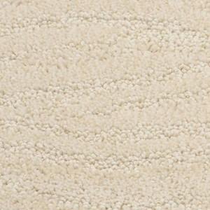 Taittinger Dixie Home Carpet Richmond Bisque