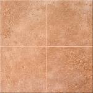 Earthpath Options Baked Clay (8 X 8 Options Tile)