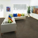 EZ Carpet