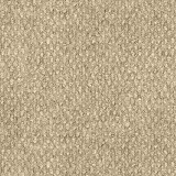 Foss Carpet Tile
