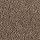 Horizon Carpet: Gentle Essence Hazy Taupe