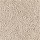Horizon Carpet: Guided Path Avalon Beige