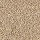 Horizon Carpet: Natural Refinement II Natural Grain