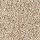 Horizon Carpet: Tonal Allure Glazed Praline