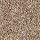 Horizon Carpet: Tonal Allure Warm Cider