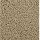 Horizon Carpet: Classic Outlook Quiet Beige