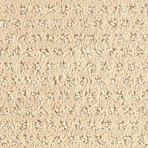Etchware Horizon Carpet Mohawk Carpet Blond Willow