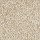 Horizon Carpet: Exceptional Choice Canyon Shade