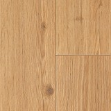 Ontario Oak
