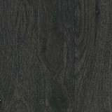 Channing 3 1/4 Inch