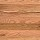 Mohawk Hardwood: Rivermont 2 1/4 Inch Red Oak Natural 2 1/4 Inch